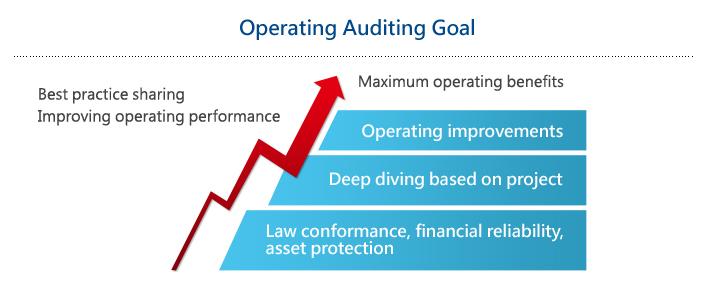 Operating Auditing Goal