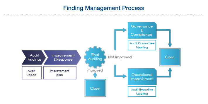 Finding Management Process