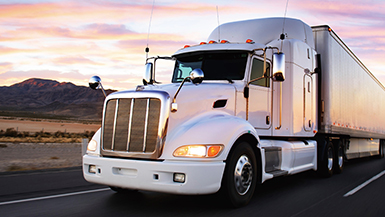 Digital Logistics and Fleet Management