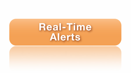 Real-Time Alerts