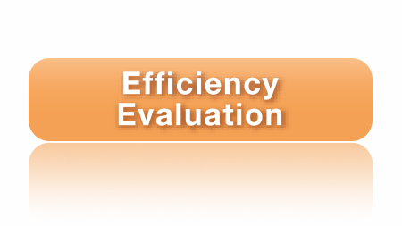 Efficiency Evaluation