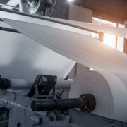 Process Manufacturing Pulp & Papers Industry